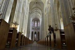 南特大教堂,卢瓦尔河地区,法国 免版税图库摄影