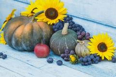 南瓜、向日葵和不同的成熟菜 库存图片