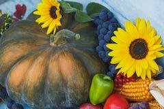 南瓜、向日葵和不同的成熟菜 图库摄影