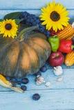 南瓜、向日葵和不同的成熟菜 库存照片