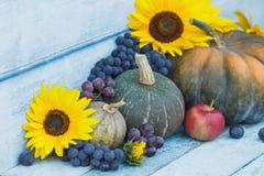 南瓜、向日葵和不同的成熟菜 免版税库存图片