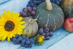 南瓜、向日葵和不同的成熟菜 免版税图库摄影