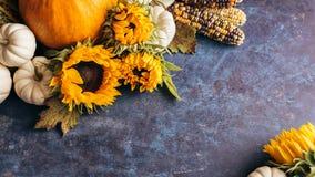 南瓜、向日葵和秋叶 免版税图库摄影
