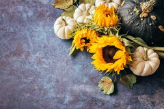 南瓜、向日葵和秋叶 库存照片