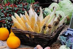南瓜、圆白菜、炽热胡椒在罐和玉米新未加工的头在一个柳条筐 库存照片