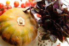 南瓜、新鲜的蓬蒿和蕃茄 图库摄影
