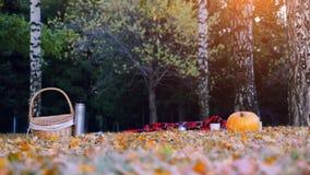 南瓜、柳条筐和格子花呢披肩毯子的图片在秋叶 免版税图库摄影