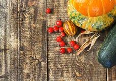 南瓜、瓜和红色莓果 库存图片