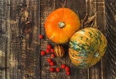 南瓜、瓜和红色莓果 免版税库存照片