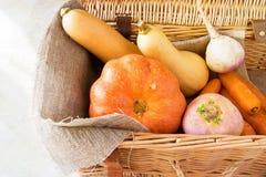 南瓜、红萝卜,胡桃南瓜和白萝卜新鲜有机 库存照片