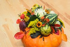 南瓜、花和叶子花束  免版税库存照片