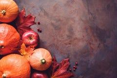 南瓜、苹果和槭树叶子在老生锈的背景 免版税库存照片