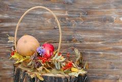 南瓜、苹果和秋叶在树桩 免版税库存照片