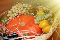 南瓜、葡萄和胡椒的安排 免版税库存图片