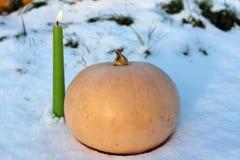 南瓜、蜡烛和圣诞树在雪戏弄 免版税图库摄影