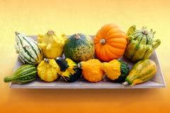 南瓜五颜六色的品种在木盘子的 免版税库存照片