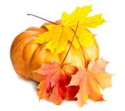 南瓜和三片槭树叶子在白色背景 免版税库存照片