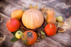 南瓜和南瓜-收获在桌、季节性水果和蔬菜上 库存照片