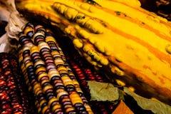南瓜和印第安玉米与叶子在秋天静物画 图库摄影
