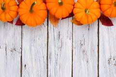 南瓜和叶子冠上在土气白色木头的边界 免版税图库摄影