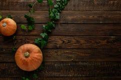 南瓜和常春藤在黑暗的木桌上 顶视图 库存图片