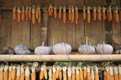 南瓜和干玉米在竹小屋 图库摄影