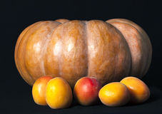 南瓜和桃子在黑背景 库存照片