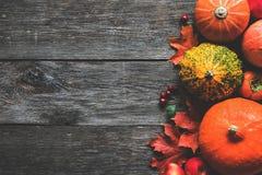 南瓜和槭树叶子在木背景 秋天框架 库存照片
