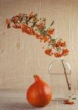 南瓜和火棘在葡萄酒设置 免版税库存照片