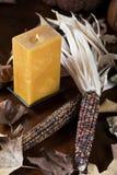 南瓜和玉米感恩装饰的 免版税图库摄影
