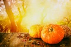 南瓜和秋叶在木桌上 感恩和万圣夜概念 库存照片