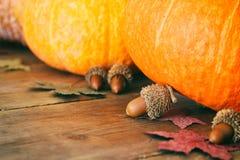 南瓜和秋叶在木背景 感恩和万圣夜概念 顶视图 免版税库存图片