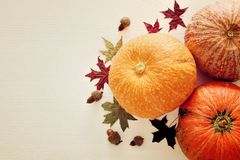 南瓜和秋叶在木背景 感恩和万圣夜概念 顶视图 免版税图库摄影