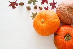 南瓜和秋叶在木背景 感恩和万圣夜概念 免版税库存图片