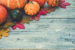 南瓜和秋叶在木背景 秋天查出的南瓜白色 免版税图库摄影