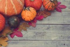 南瓜和秋叶在木背景 秋天查出的南瓜白色 库存图片