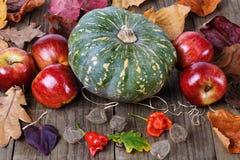 南瓜和苹果在秋天静物画 库存图片