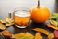 南瓜和茶杯子 免版税库存图片