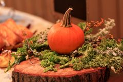 南瓜和菜作为装饰在一个树桩在休息 免版税图库摄影
