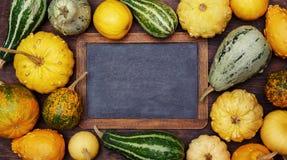 南瓜和葡萄酒黑板 免版税库存图片