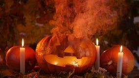 南瓜和蜡烛在烟 日历概念日期冷面万圣节愉快的藏品微型收割机说大镰刀身分 股票视频