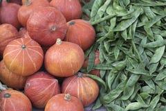 南瓜和豆 免版税图库摄影