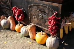 南瓜和辣椒在烤箱旁边 免版税库存图片