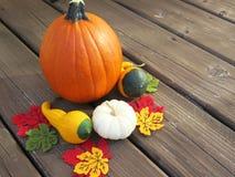 南瓜和金瓜在木地板上的秋天显示 库存图片