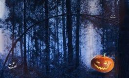 南瓜在哥特式样式haloween在森林 库存图片