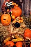 南瓜头和秋天支柱在木背景 库存照片