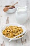 南瓜格兰诺拉麦片用牛奶和蜂蜜 免版税库存照片