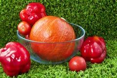 南瓜用胡椒和蕃茄 库存图片