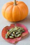 南瓜盐味的种子 库存照片