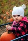 南瓜补丁无盖货车的婴孩 免版税库存照片